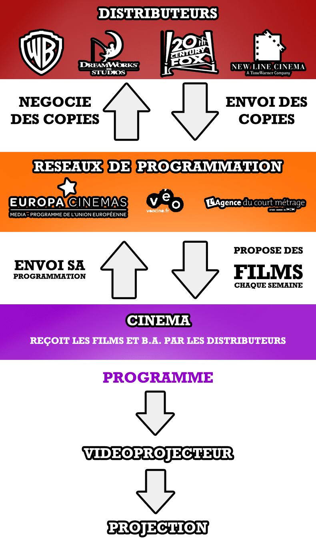 Infographie Projection numérique