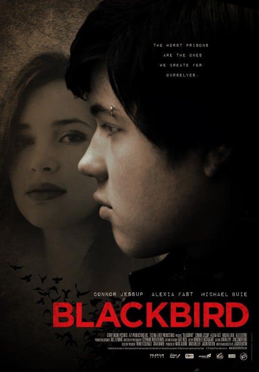 Affiche Blackbird